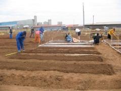 South Africa, Planting Garden